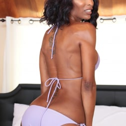 Pierce Paris in 'Evil Angel TS' Hot For Transsexuals 4 (Thumbnail 11)