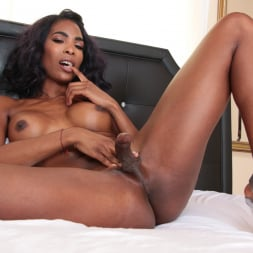 Pierce Paris in 'Evil Angel TS' Hot For Transsexuals 4 (Thumbnail 99)
